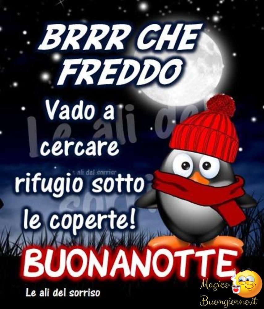 Buonanotte Bella 92