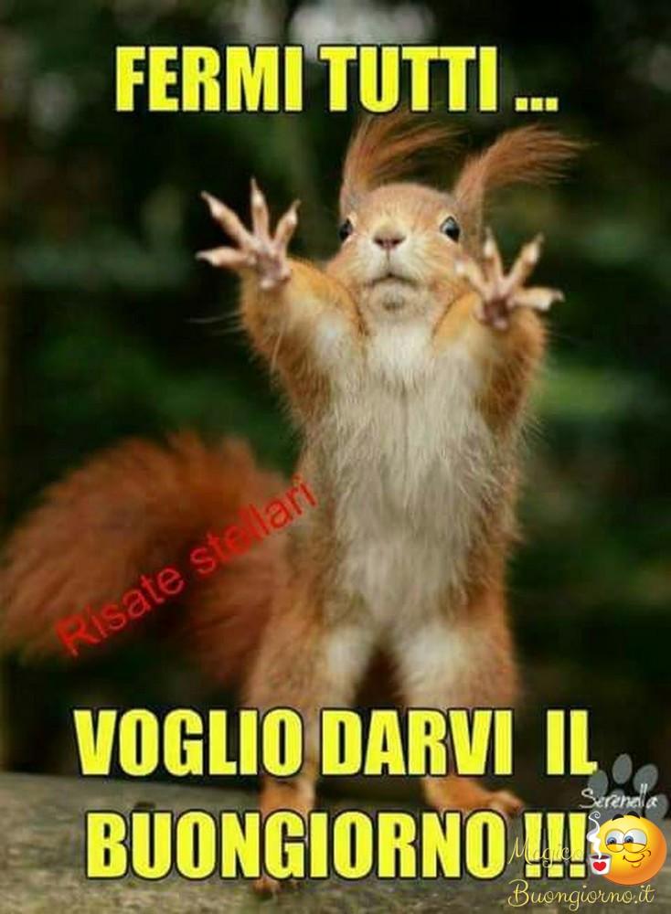 Buongiorno per facebook whatsapp foto for Foto divertenti gratis