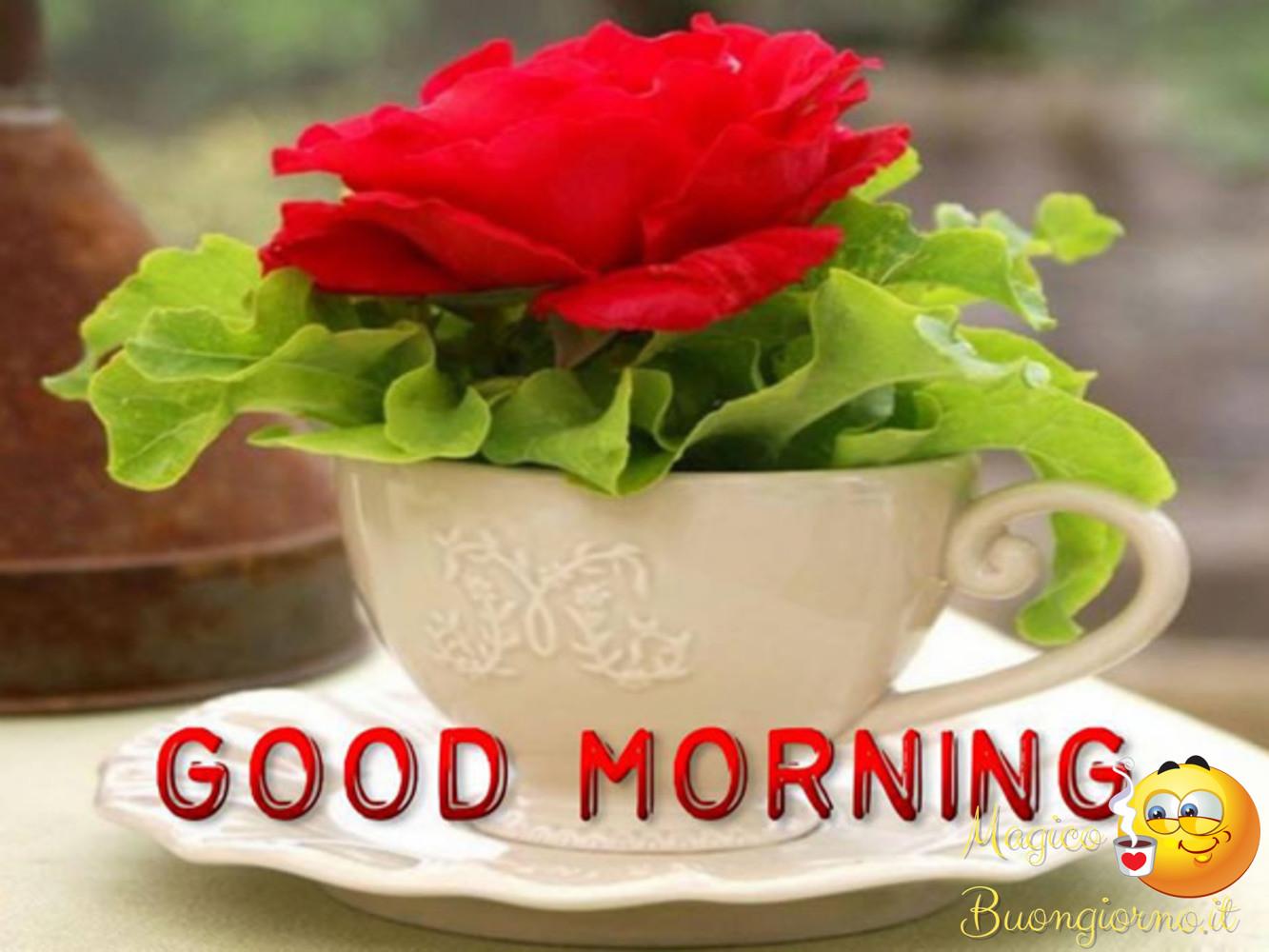 Good Morning Whatsapp Facebook 3