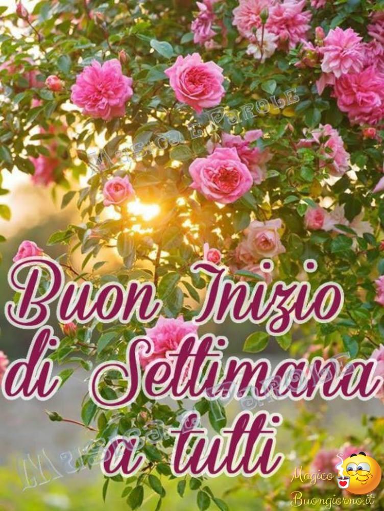 Immagini Belle Buon Inizio Settimana Archivi Pagina 4 Di 6