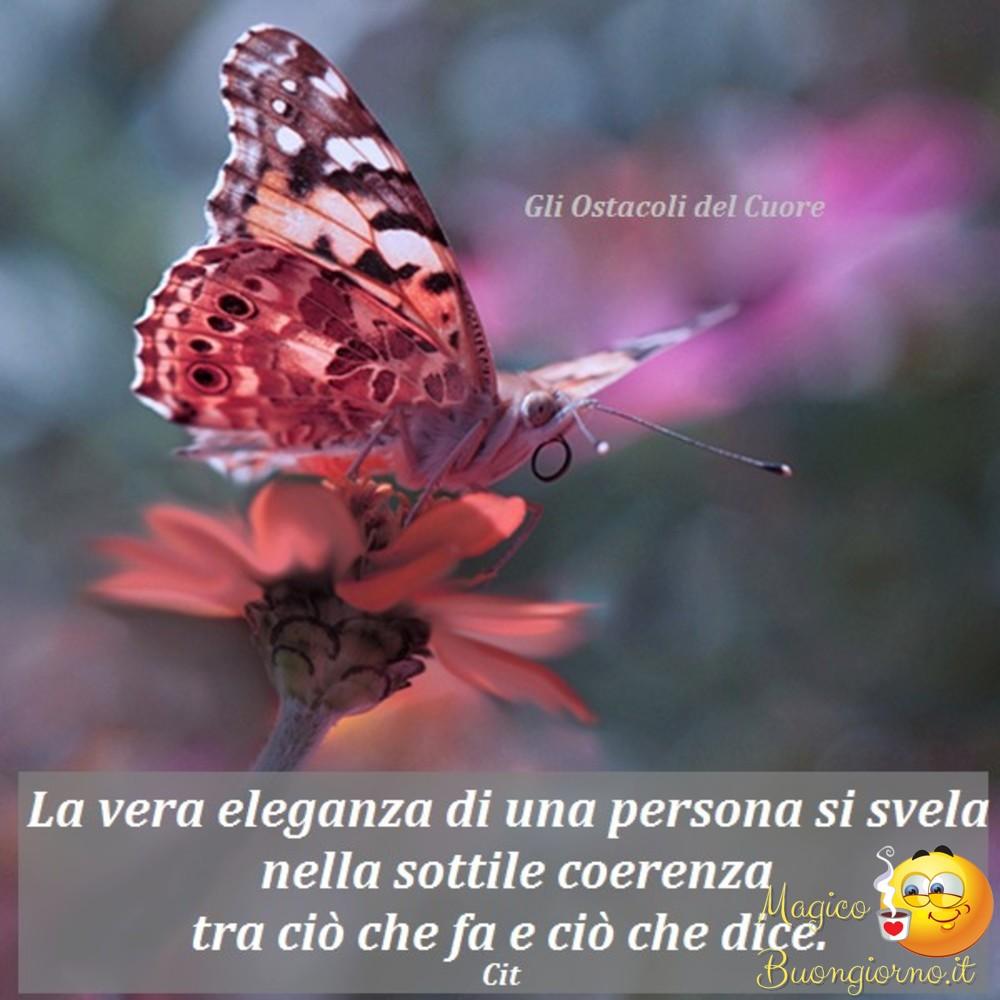 Frasi Belle Dulla Vita Archivi Magicobuongiorno It