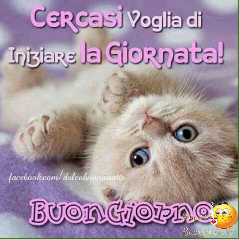 Buongiorno foto belle immagini divertenti per whatsapp e for Foto belle di buongiorno