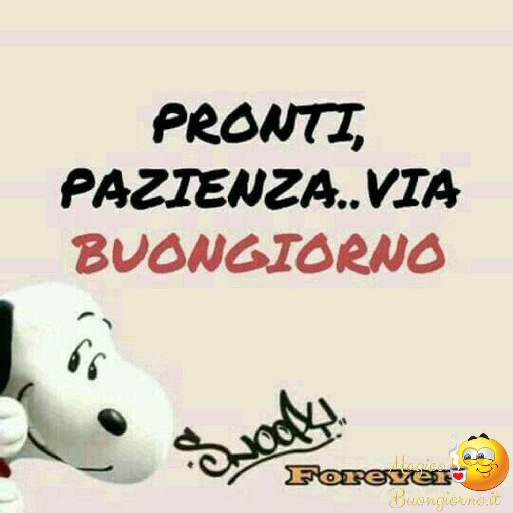 Immagini di buongiorno da scaricare gratis per whatsapp for Immagini snoopy gratis