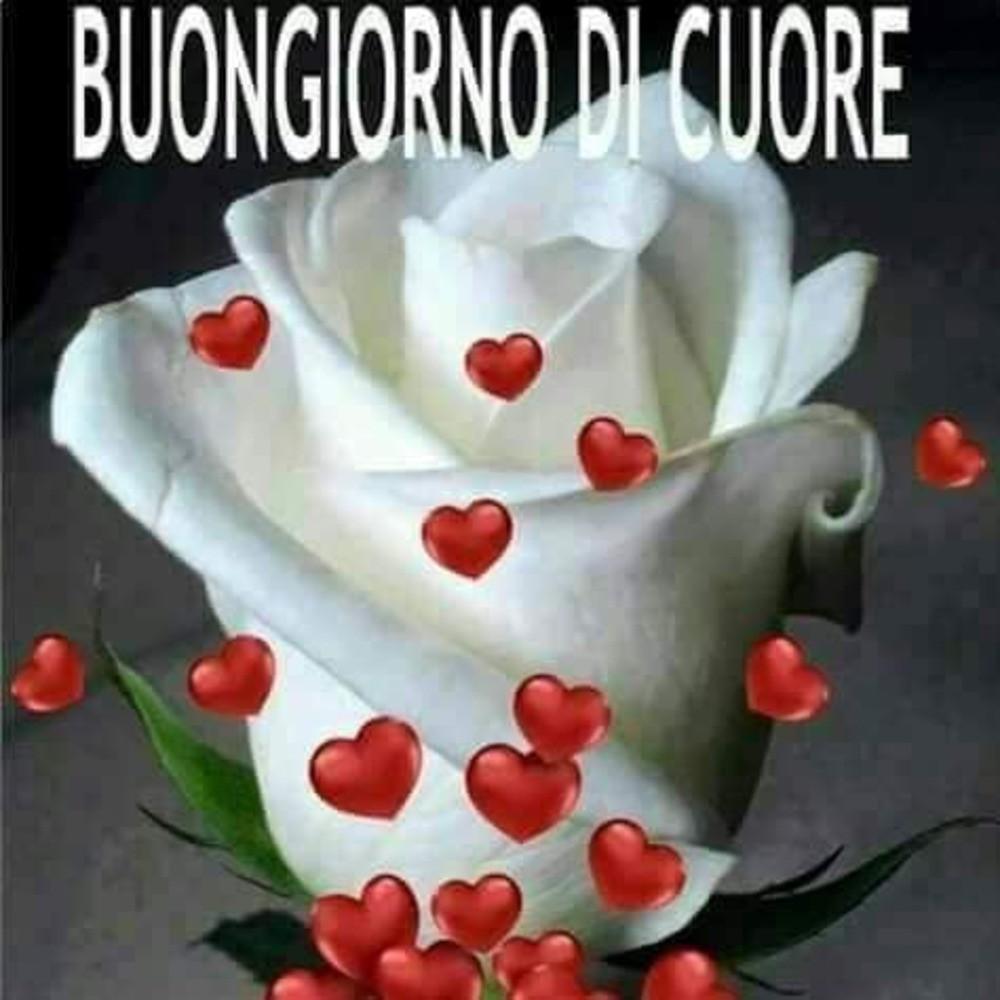 Buongiorno Belle Immagini per Whatsapp