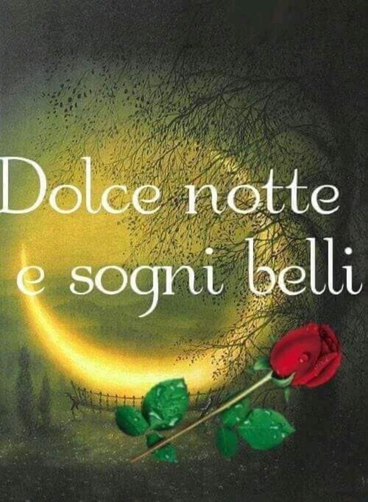 Immagini-belle-buonanotte-whatsapp-e-facebook